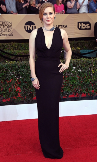 The 23rd Annual Screen Actors Guild Awards - Arrivals